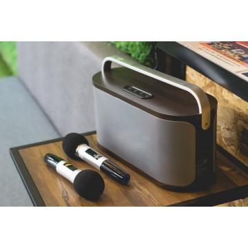 Portable Karaoke Speaker